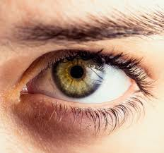 瞼の筋トレ